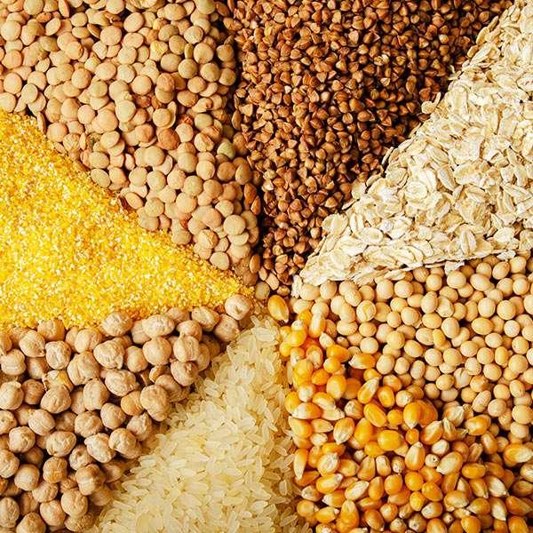 Cereale, Făinuri, Orez, Leguminoase